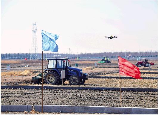 袁隆平带领的青岛海水稻研发中心启动万亩耐盐碱超级杂交水稻示范种植项目