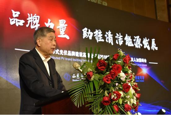 中国光伏行业协会秘书长王勃华