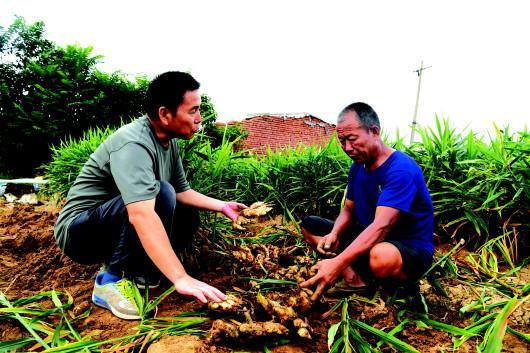 在昌乐县红河镇清泉村,农技专家走村入户指导灾后生产。□CFP供图