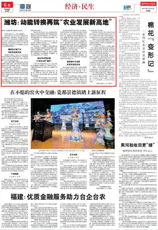 """新华社聚焦潍坊:动能转换再筑""""农业发展新高地"""""""