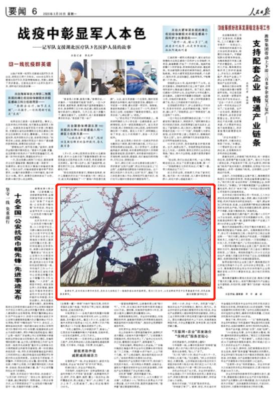 """『东岳客』聊城这个村的""""桃园春耕图"""",登上人民日报"""