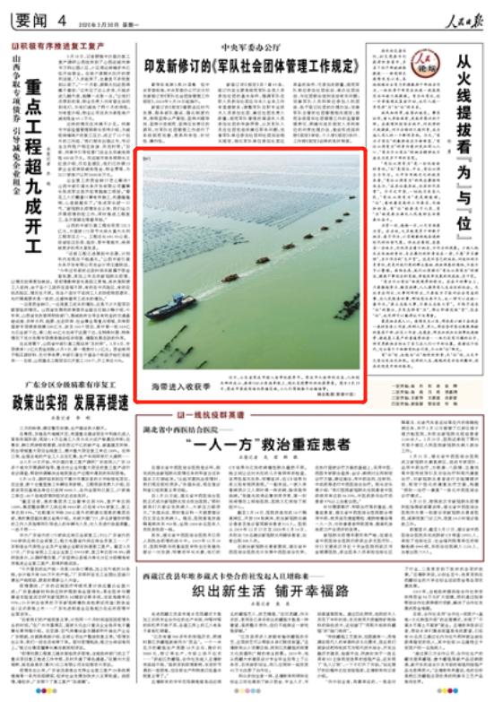 【人民日报】运输场面壮观,威海荣成:海带进入收获季