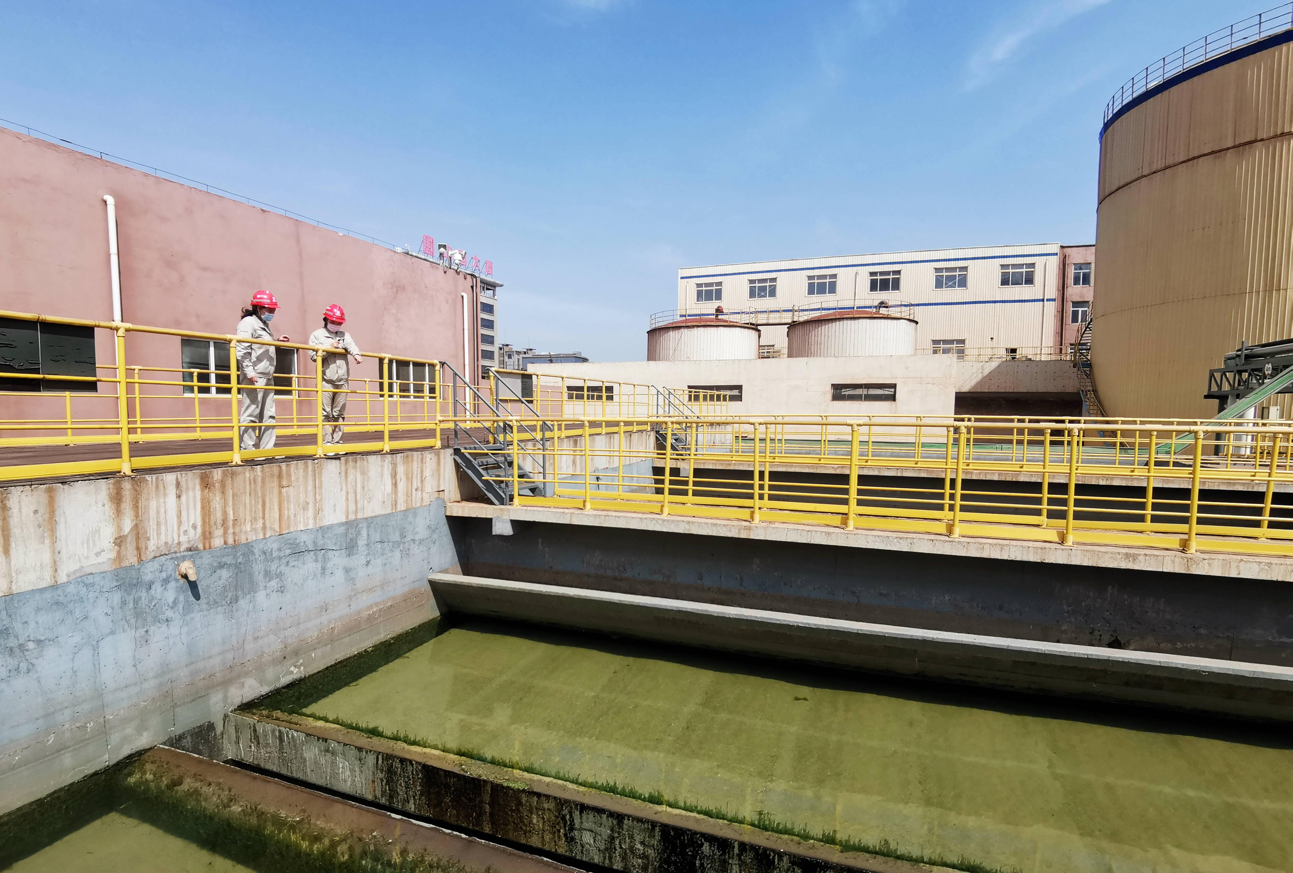 工作人员查看海水淡化V型滤池。记者 李涛 摄