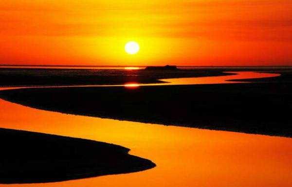 """做好黄河流域生态保护和高质量发展""""大文章"""",山东各地正""""千帆"""