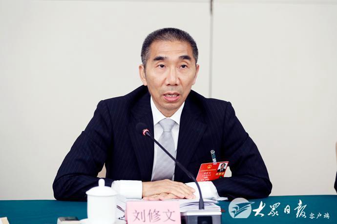 山东代表团举行全体会议审议政府工作报告