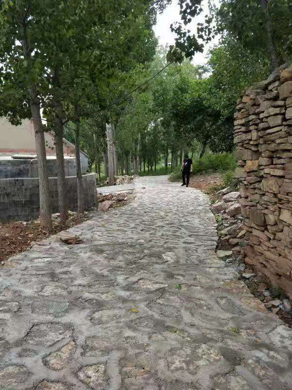 崮崖村利用石板修路突出古村落的古朴风格